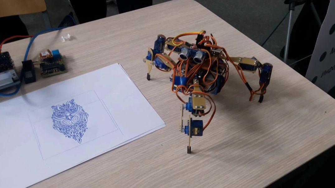 O'rgimchak Robot | Uzbek bollar yaratgan