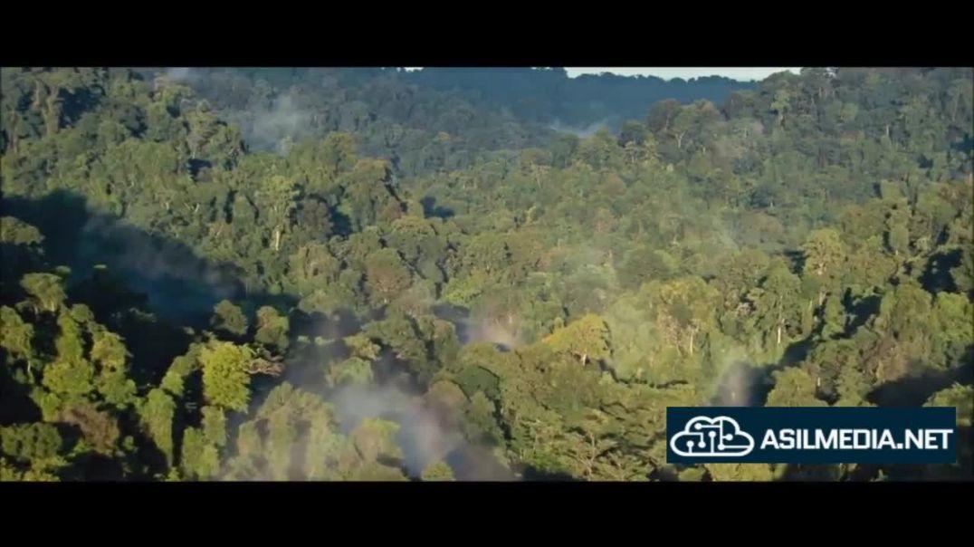 Maymunlar sayyorasi 1 (Tarjima Kino HD) | Маймунлар Саёраси 1 (Таржима кино ТАС ИКС)